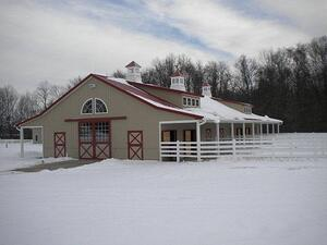 Classic Equine Equipment Blog - snowfall