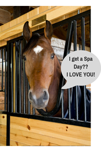 Did you say Spa Day__ (1)