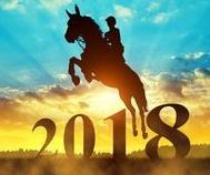2018-jumping-horse-new-year.jpg