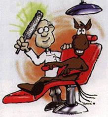 dentistvisit