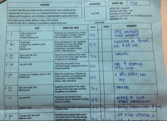 dresage test score sheet