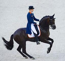 dressage REVERSED TheHorse