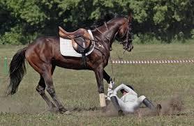 fallen off a horse