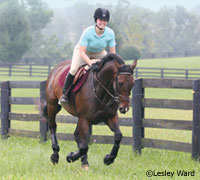 galloping conditioning HORSECHANNEL