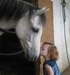 girl-kissing-race-horse