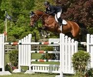 HH Azur Equestrian Life