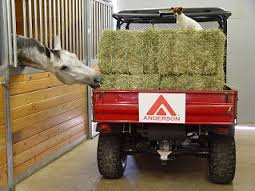 horse eating hay truck