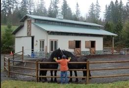 horse sacrifice area HorsesForCleanWater