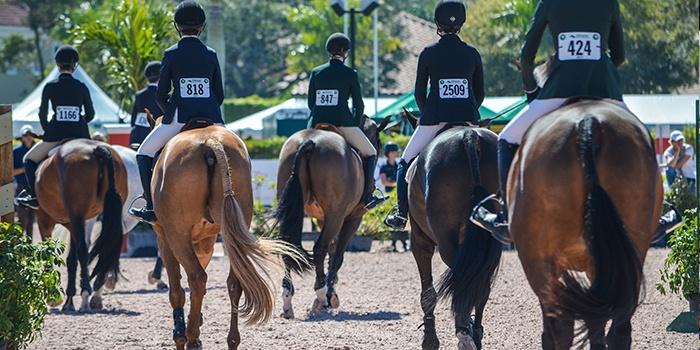 horse show hunter class EquestrianSportProductions