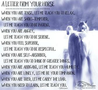 lessons from your horse