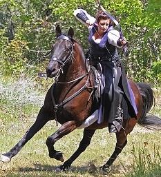 mounted archery 2 50 percent