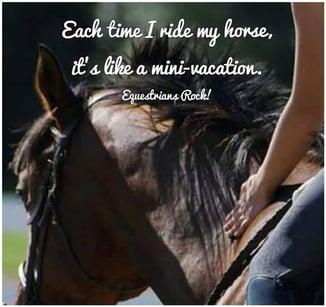 ride my horse mini station