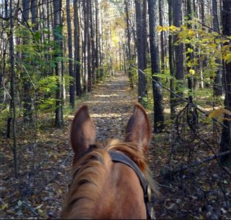 trail riding solo EQUITREKKING