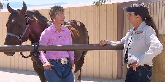 working with trainer Julie Goodnight RFD TV