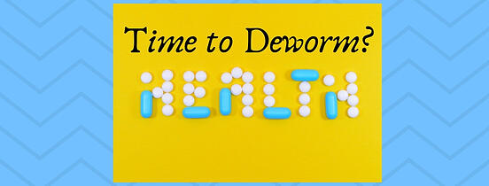 Time to Deworm_