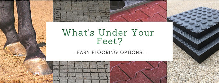 What's Under Your Feet_
