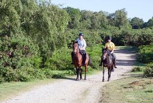 horse-riders-Classic Blog