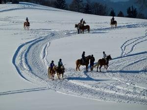 snow-1860824_1280