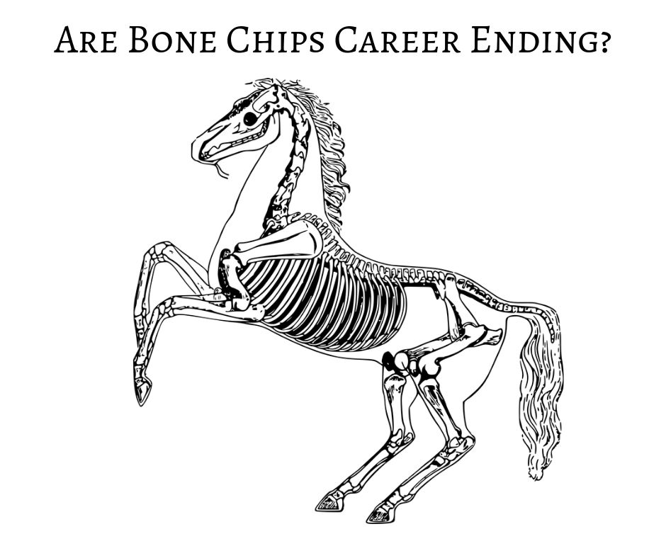 Are Bone Chips Career Ending_