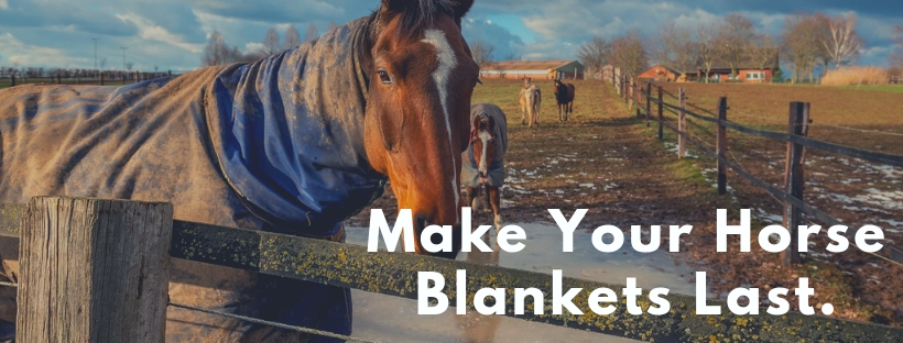 Get The Most Out Of Your Horse Blankets