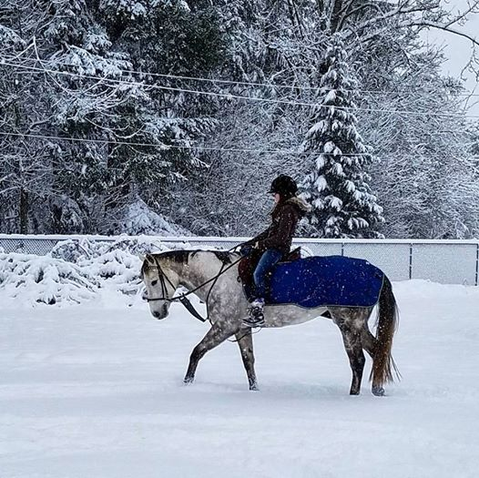 riding-in-snow-katie-peery