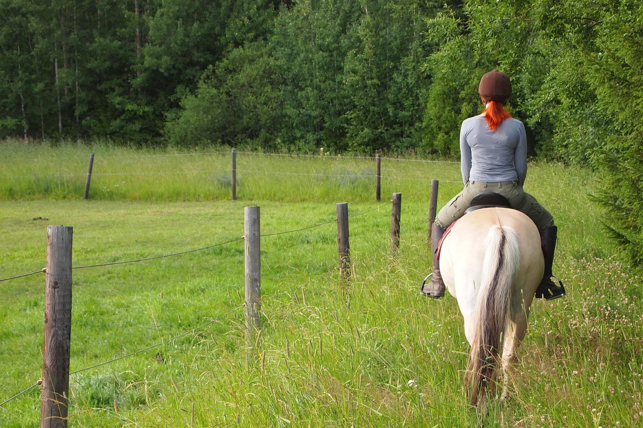 horseback-riding-3855677_1280