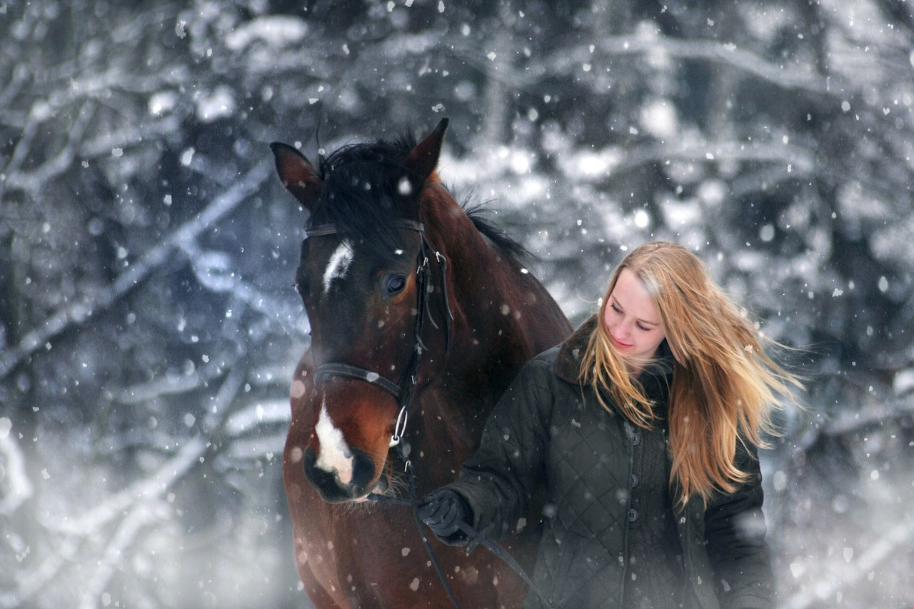 winter-wonderland-3821448_1280
